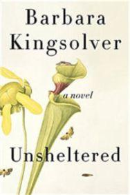 Unsheltered-Medium